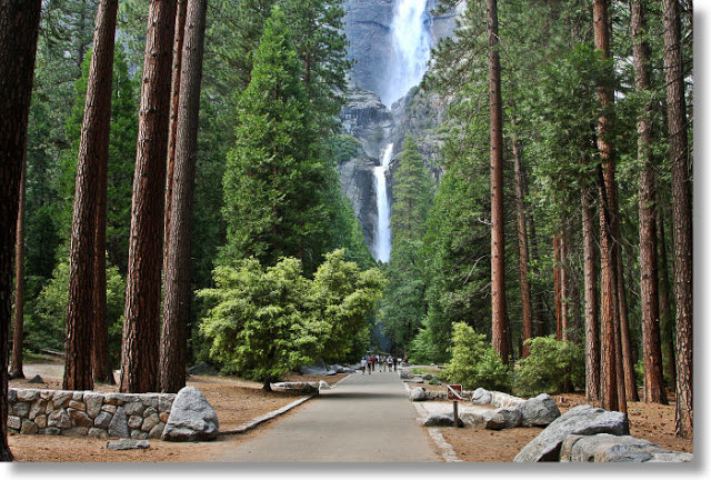 Halprin's redesign of the approach to Yosemite Falls; courtesy of yosemitehikes.com Since 2005, visitors are greeted by Halprin's trail system and visitors' facilities. Today, about four million people a year visit the iconic landscape of Yosemite National Park.