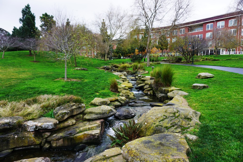 Creek and Buildings, Letterman Digital Arts Center, 2015 Courtesy of Alison Moore